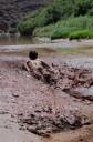 Noah sliding