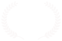 Best Director - Escape Velocity Film Festival - 2017