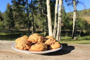 Kai Staats - Buffalo Chip Cookies