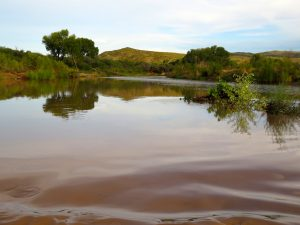 The mighty, muddy San Pedro at Cascabel, by Kai Staats